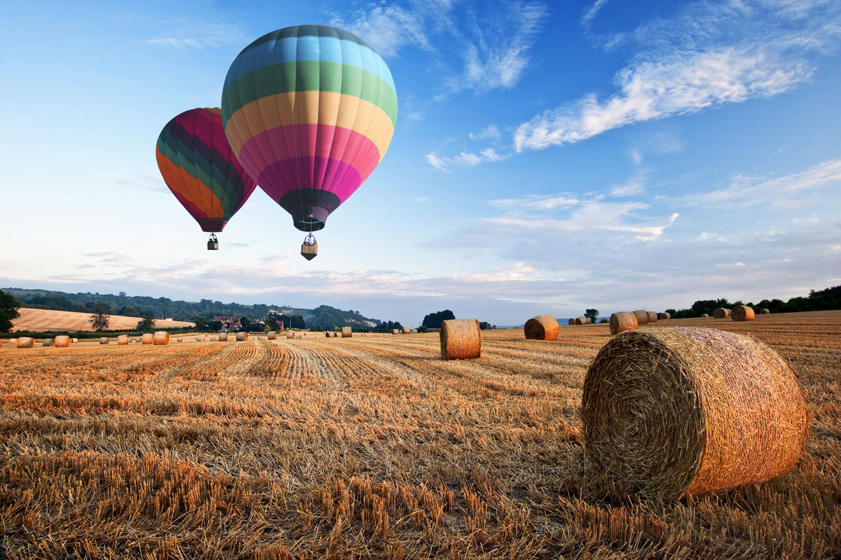 Hot Air Balloons In Hay Field With Blue Skies